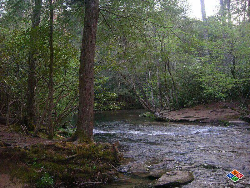 Abrams_Creek_Near_Trailhead